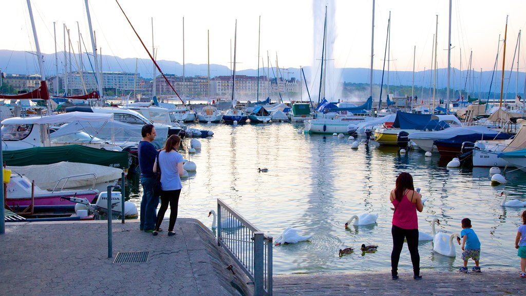 Jet d\'Eau Fountain which includes a marina as well as a small group of people