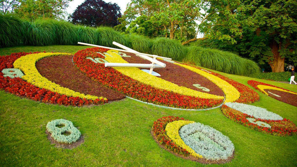 Flower Clock showing flowers, outdoor art and a park