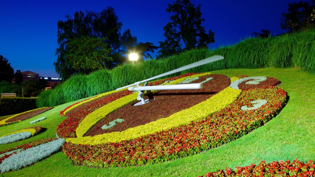 Flower Clock which includes night scenes, outdoor art and flowers