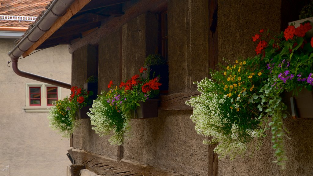 Thun Castle featuring flowers