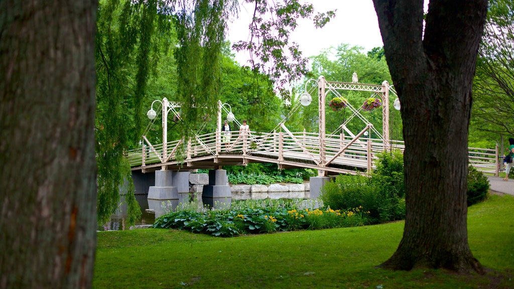 Kitchener featuring a bridge and a park