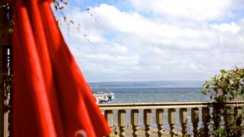 Pictou showing general coastal views