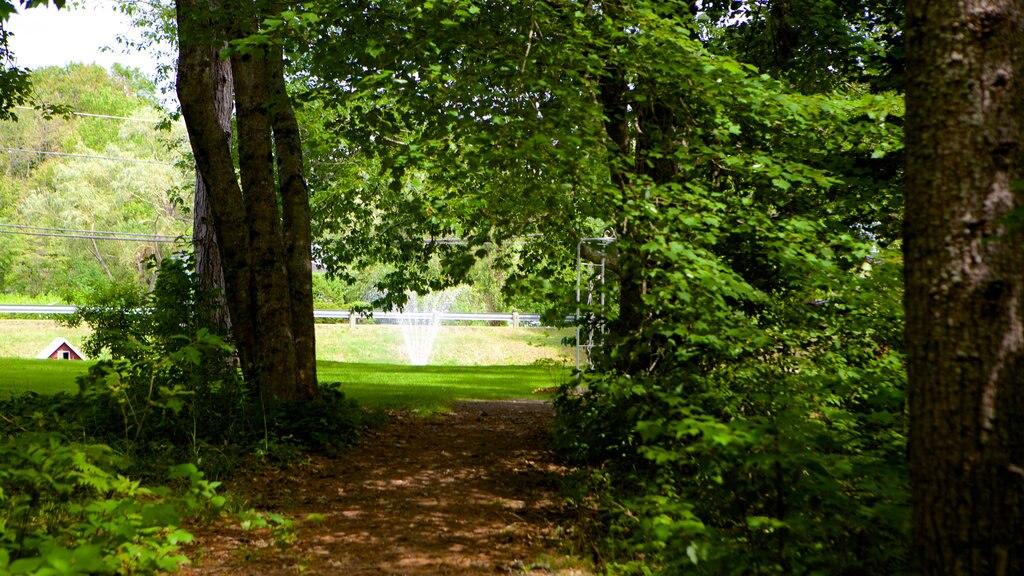 Kingston que incluye un jardín y bosques