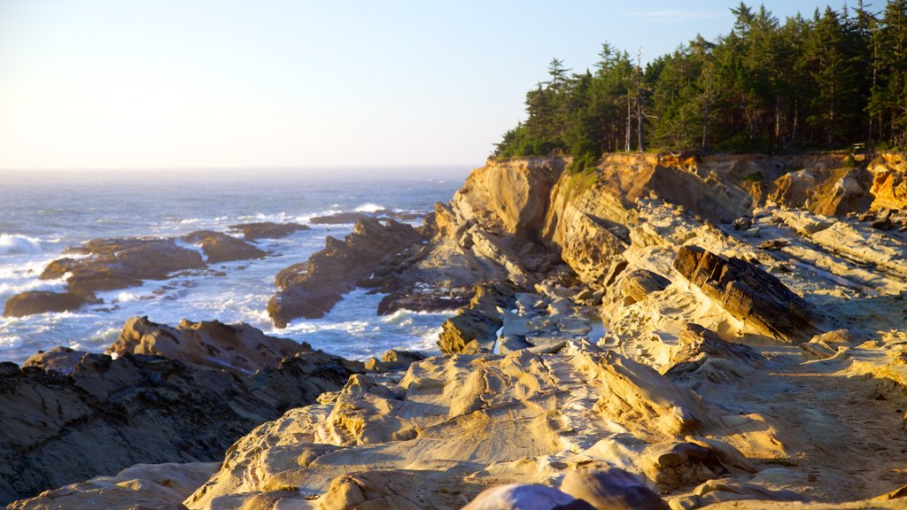 Shore Acres State Park featuring landscape views and rugged coastline