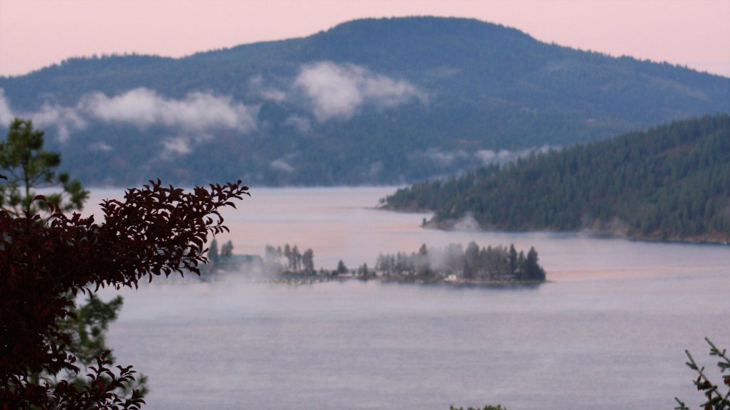 Coeur d\'Alene showing mist or fog and a lake or waterhole