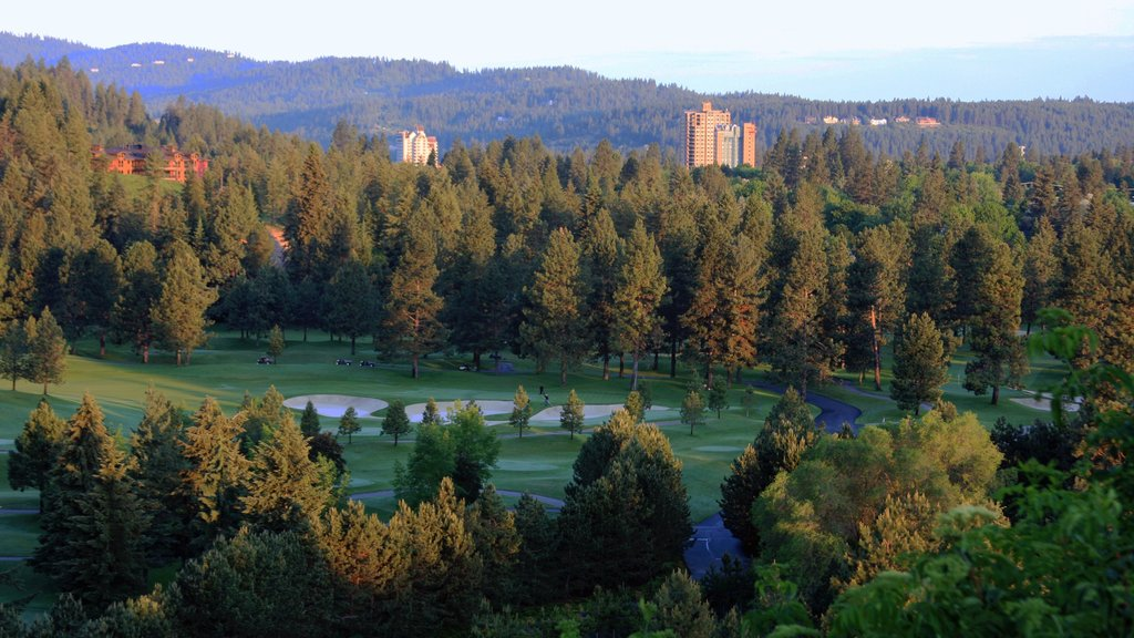 Coeur d\'Alene which includes golf, landscape views and forest scenes