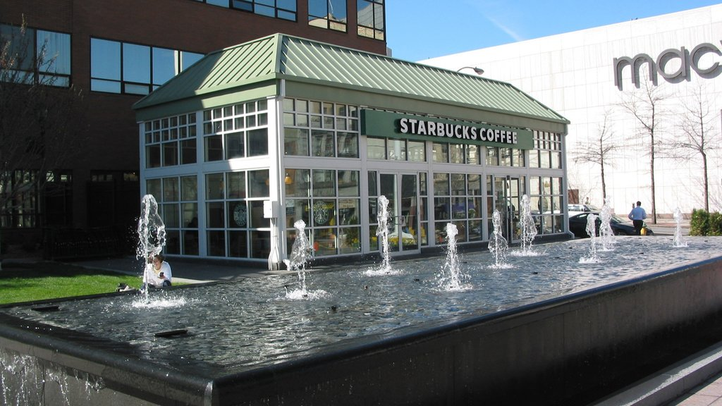 White Plains which includes a fountain and modern architecture