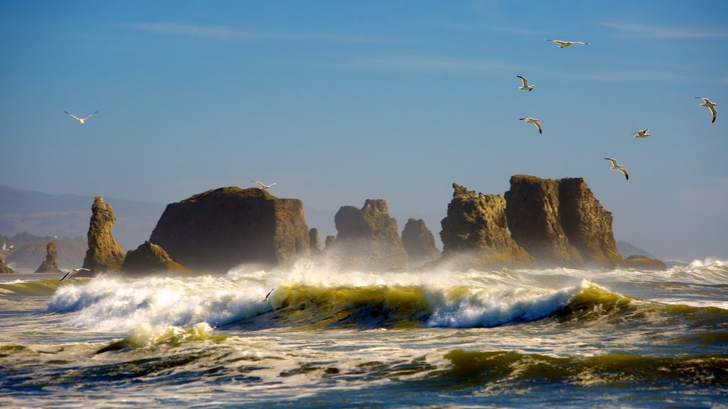 Bandon Beach which includes waves and rugged coastline