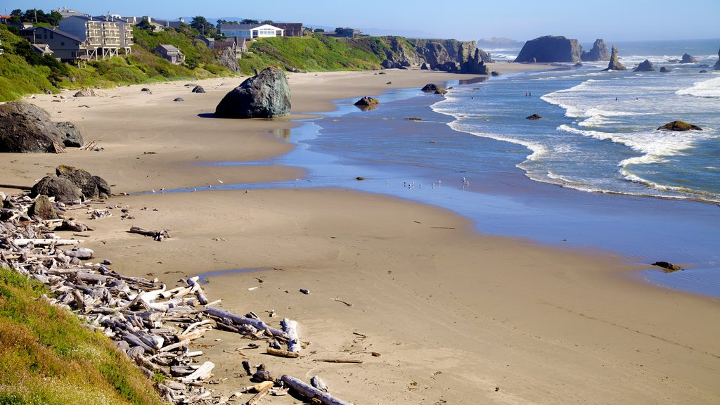 Bandon Beach featuring a sandy beach