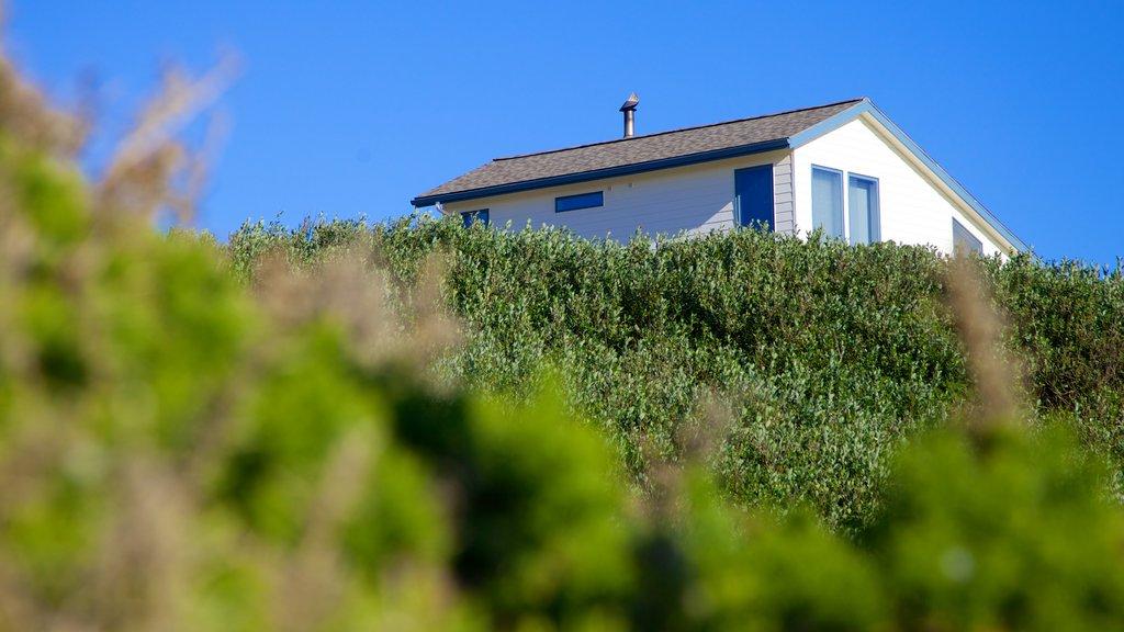 Bandon Beach showing a house
