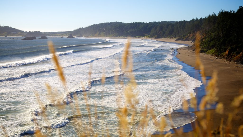Port Orford featuring a sandy beach