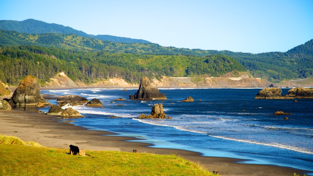 Port Orford featuring a beach