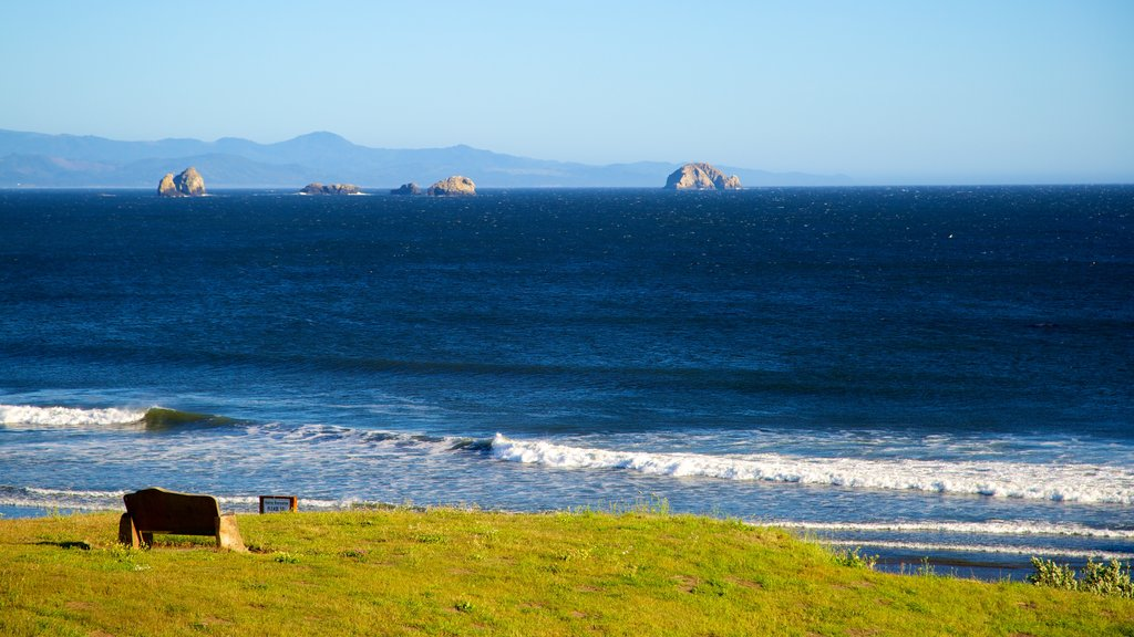 Port Orford featuring general coastal views