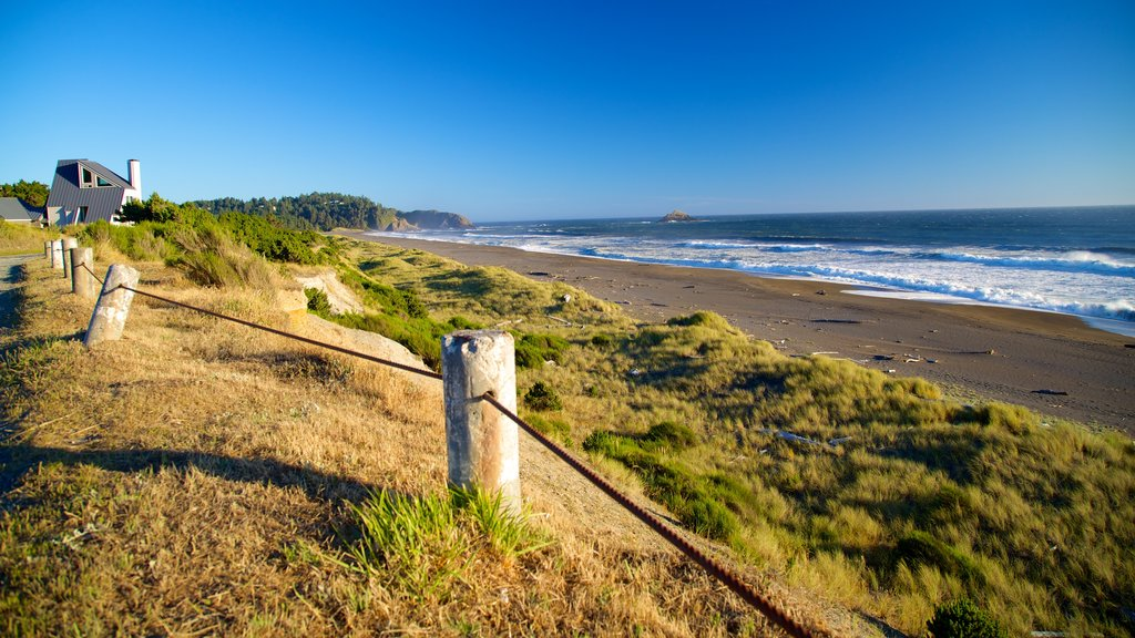 Port Orford featuring general coastal views and a sandy beach