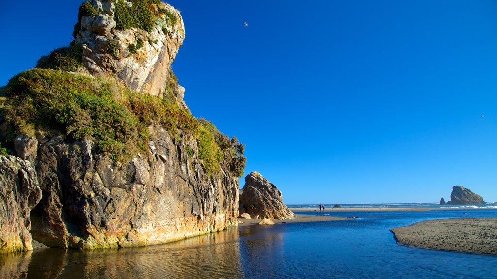 Harris Beach State Park featuring rocky coastline and a sandy beach