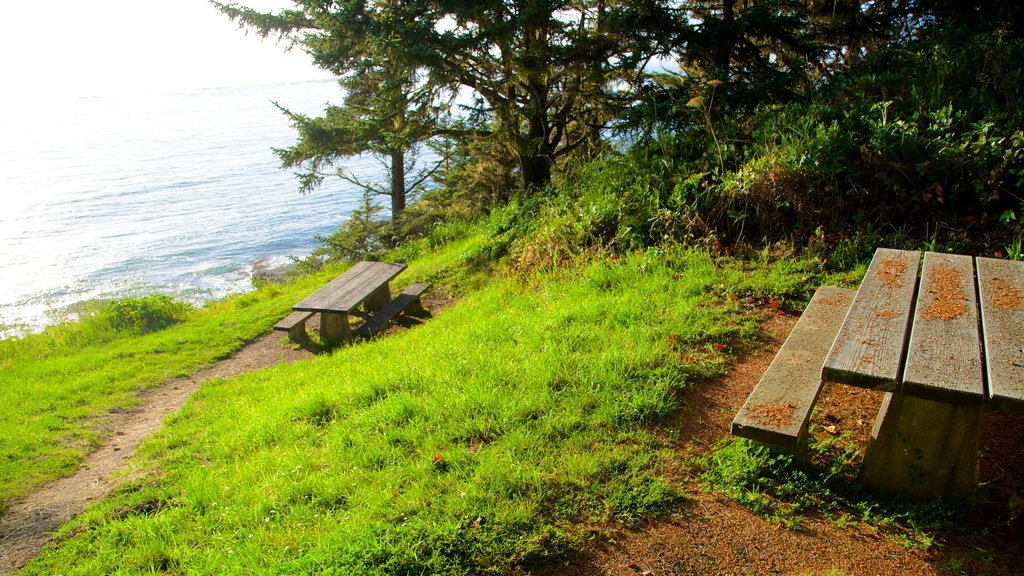 Cape Arago State Park showing general coastal views