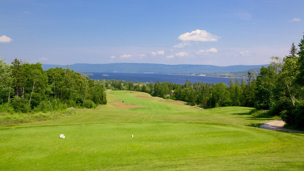 Deer Lake - Corner Brook showing golf