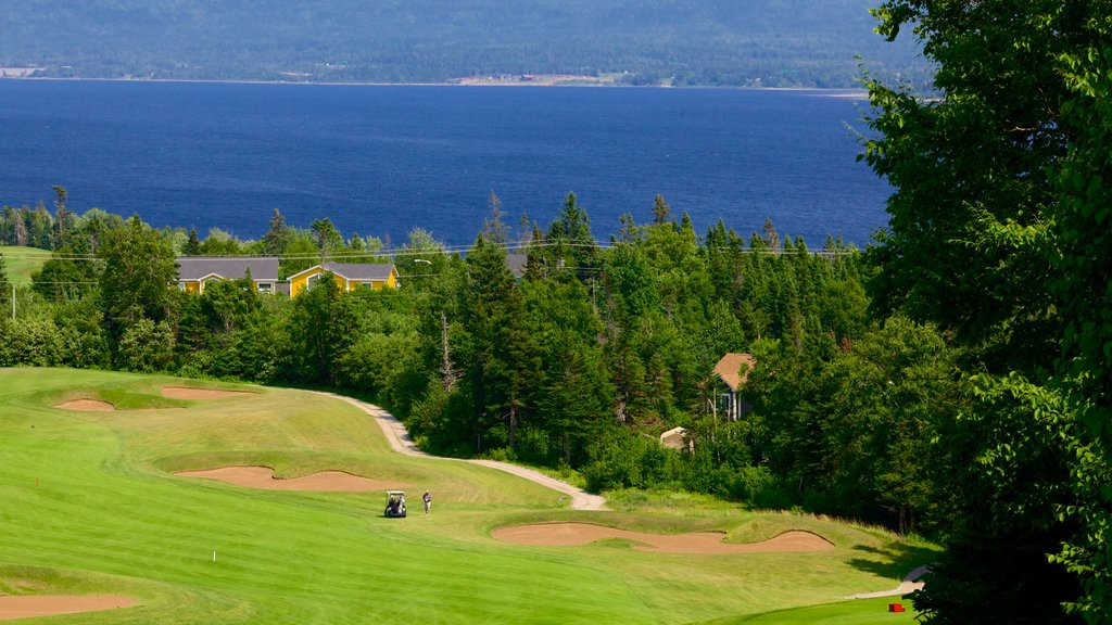 Humber Valley featuring golf