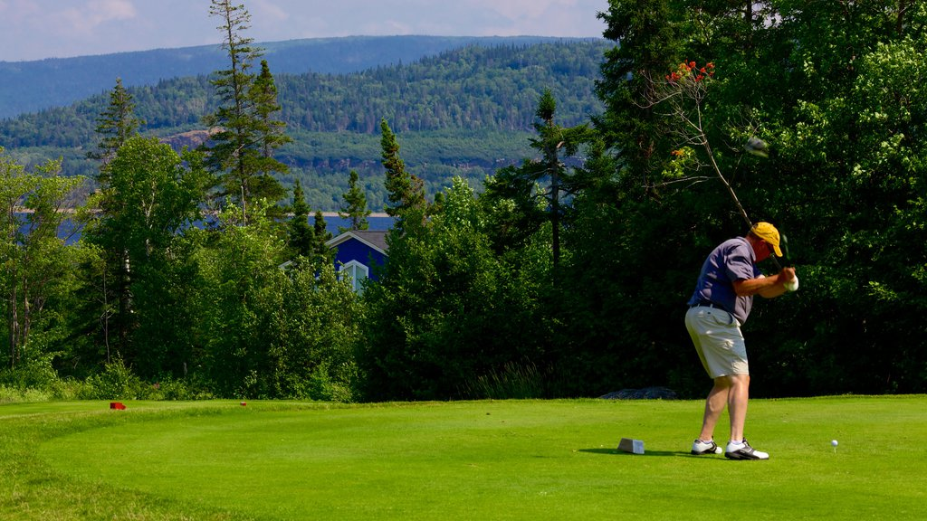 Humber Valley featuring golf as well as an individual male