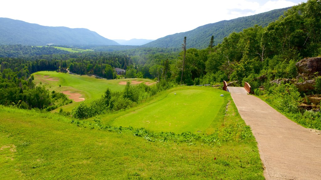 Humber Valley showing golf