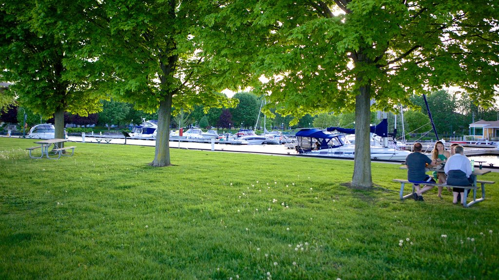 Brockville showing a park and a marina