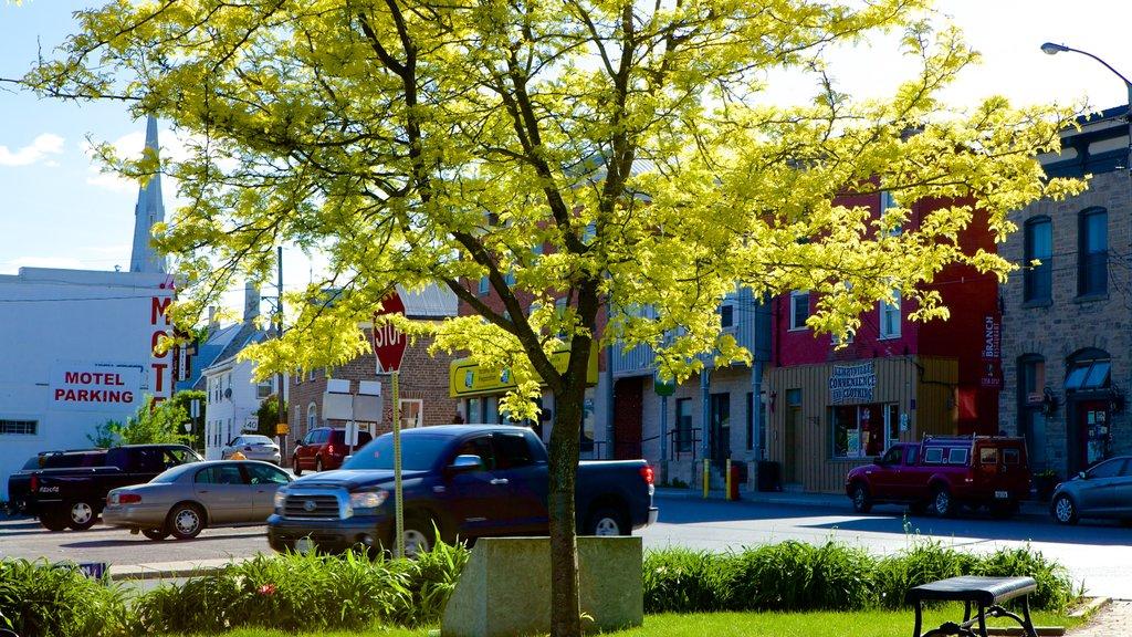Kemptville featuring street scenes