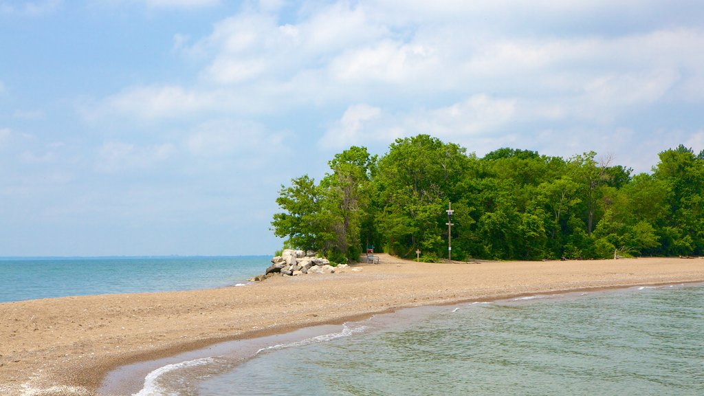 Point Pelee National Park showing a pebble beach