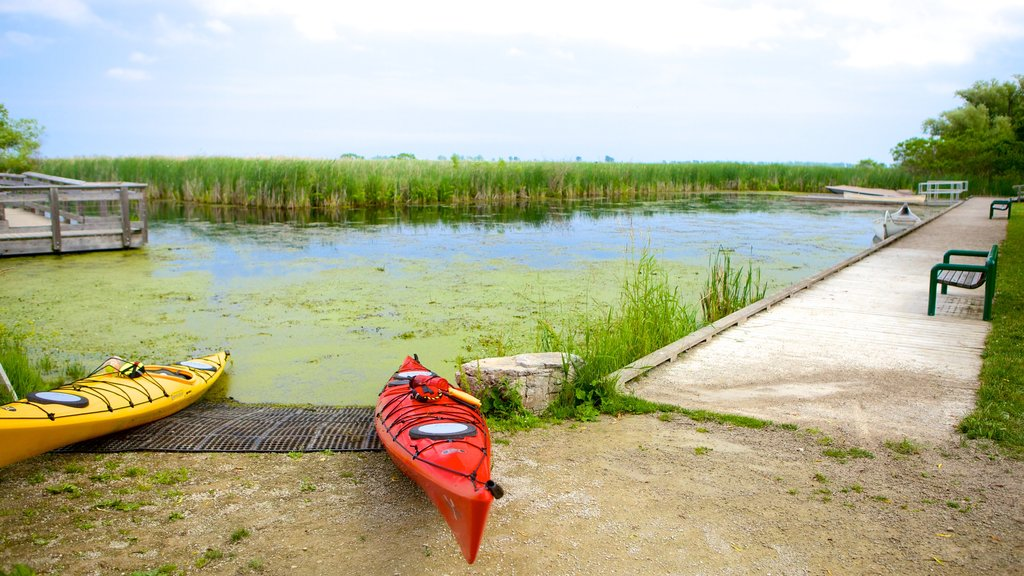 Point Pelee National Park showing a lake or waterhole