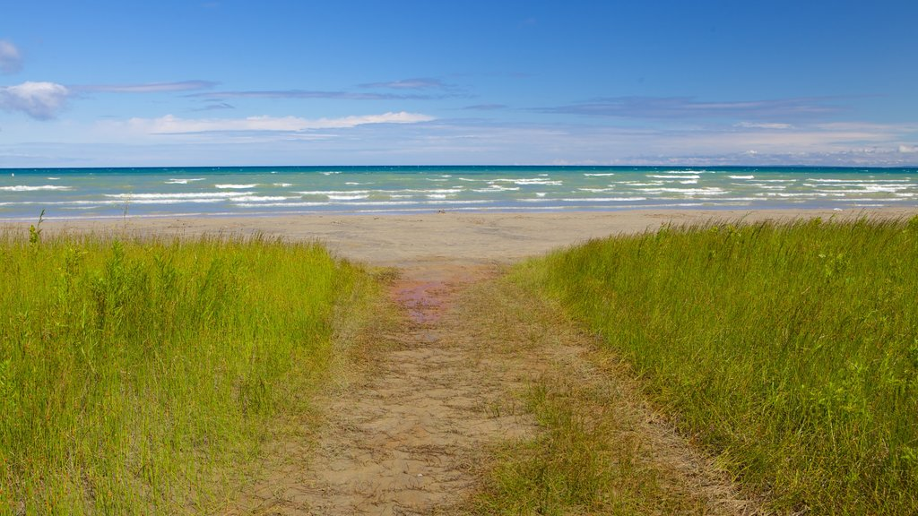 Wasaga Beach Provincial Park which includes a sandy beach