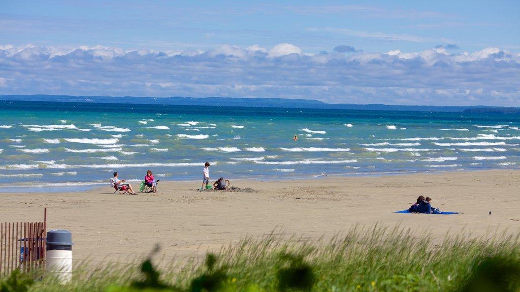 Wasaga Beach Provincial Park featuring a sandy beach