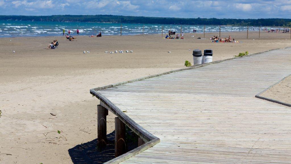 Wasaga Beach Provincial Park featuring a beach and a bridge
