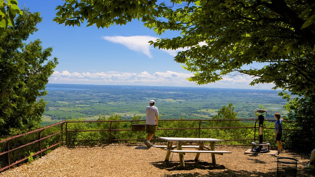 Collingwood Scenic Caves showing views