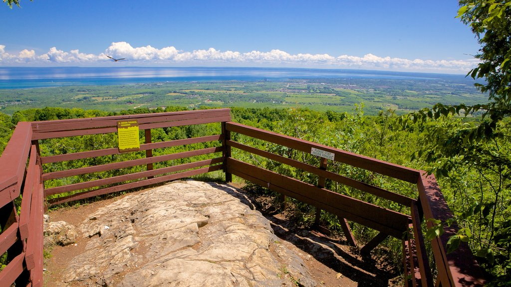 Collingwood Scenic Caves which includes views