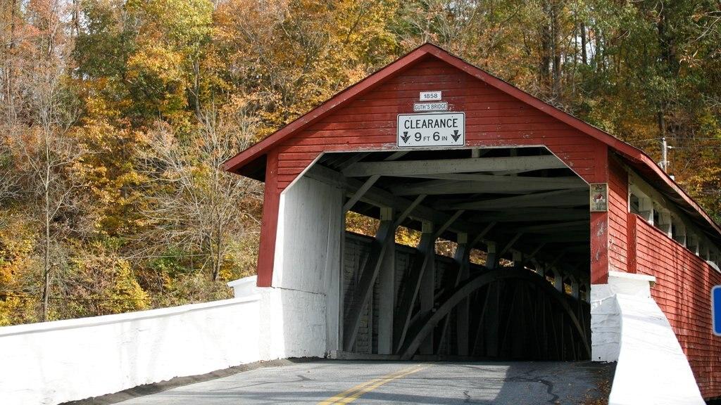 Allentown showing a bridge