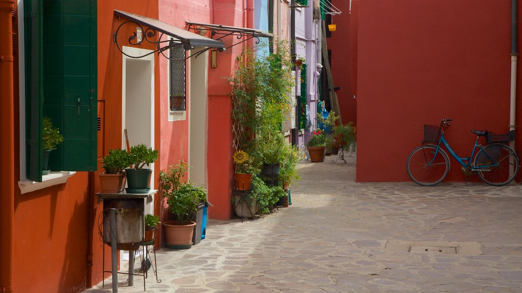 Burano which includes a house
