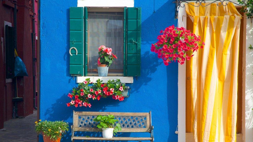Burano mostrando una casa, patrimonio de arquitectura y flores