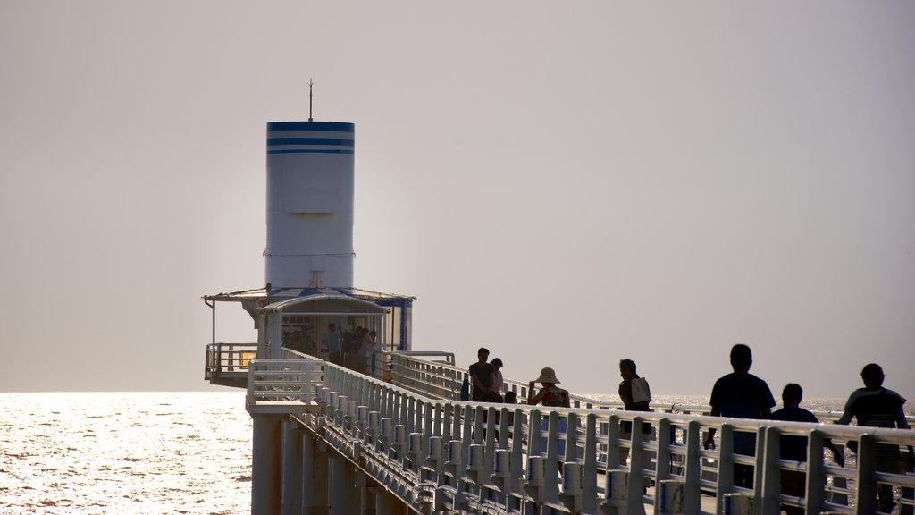 Parque Marino Busena mostrando vistas y vistas generales de la costa y también un pequeño grupo de personas