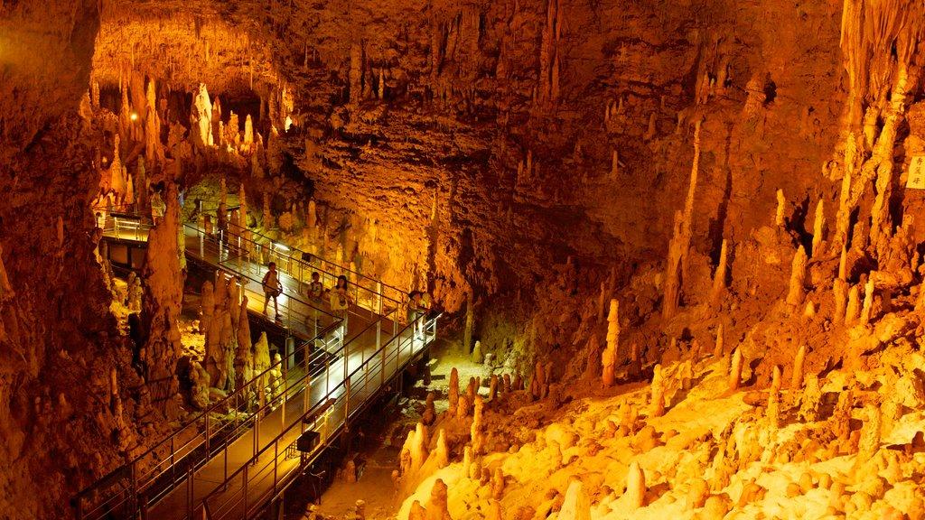 Okinawa featuring interior views, caving and caves
