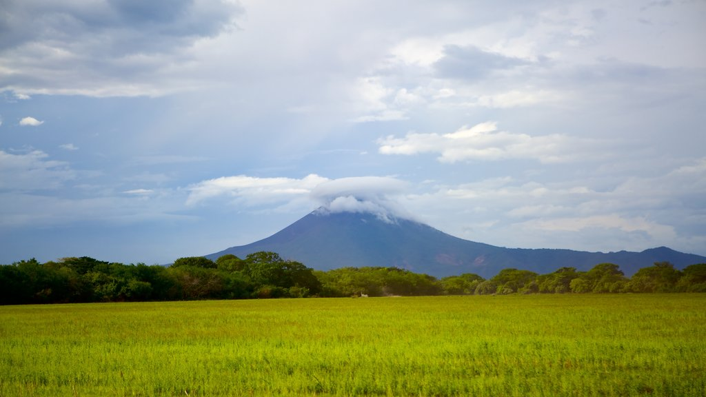 Managua which includes tranquil scenes