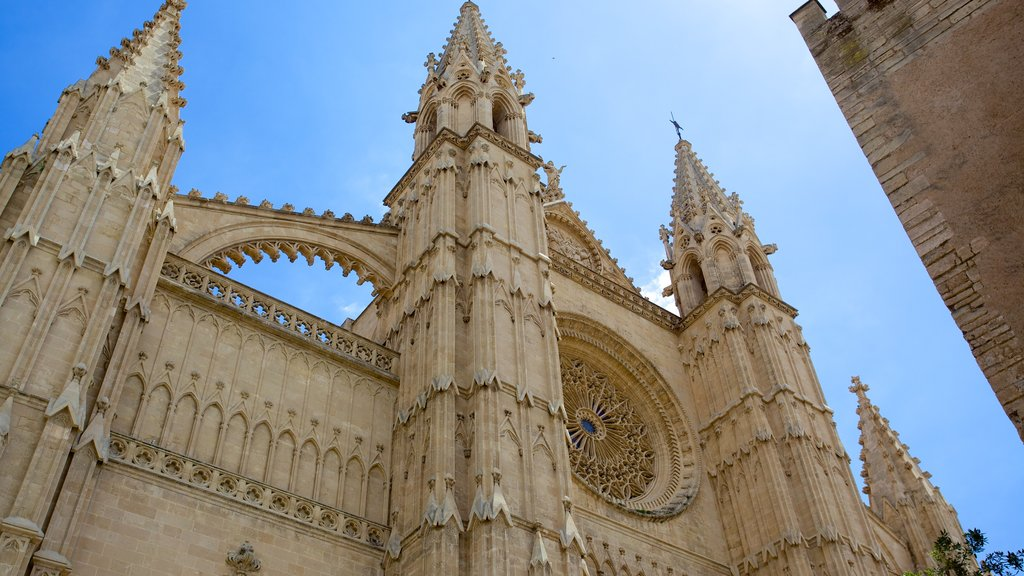Mallorca Cathedral featuring a church or cathedral, heritage architecture and religious aspects