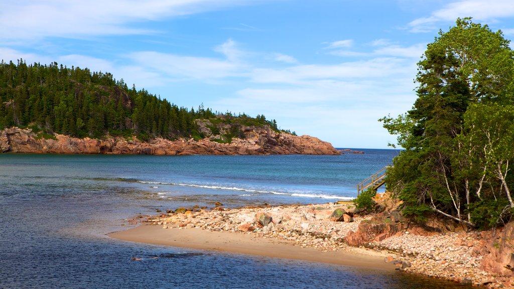 Cape Breton Highlands National Park ofreciendo costa rocosa