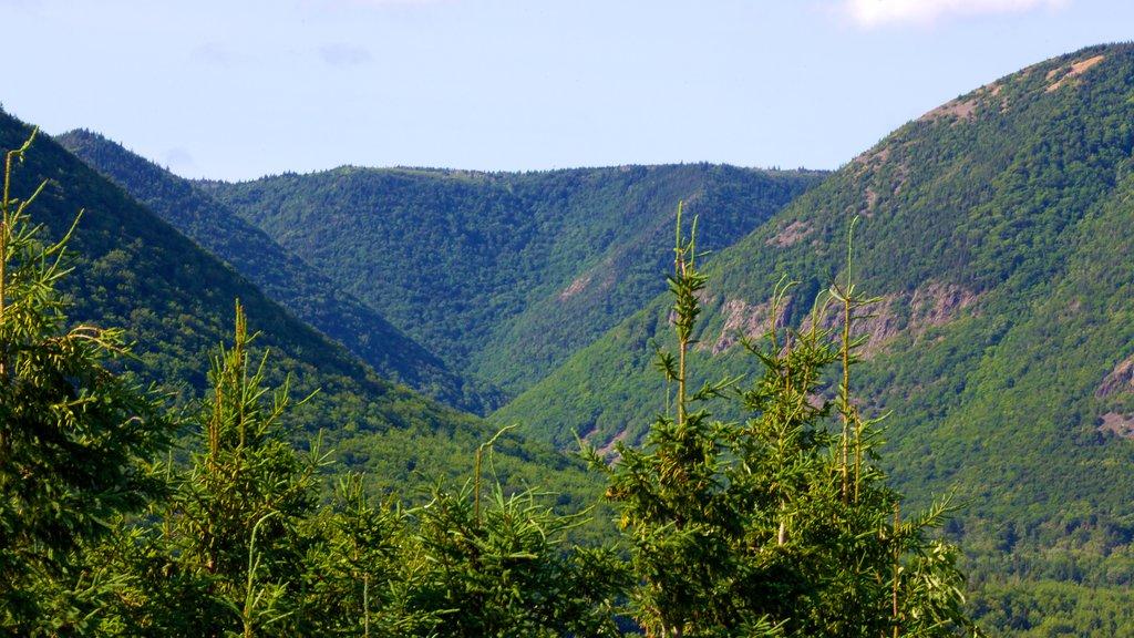Cape Breton Highlands National Park ofreciendo montañas