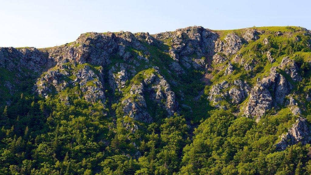 Cape Breton Highlands National Park que incluye montañas