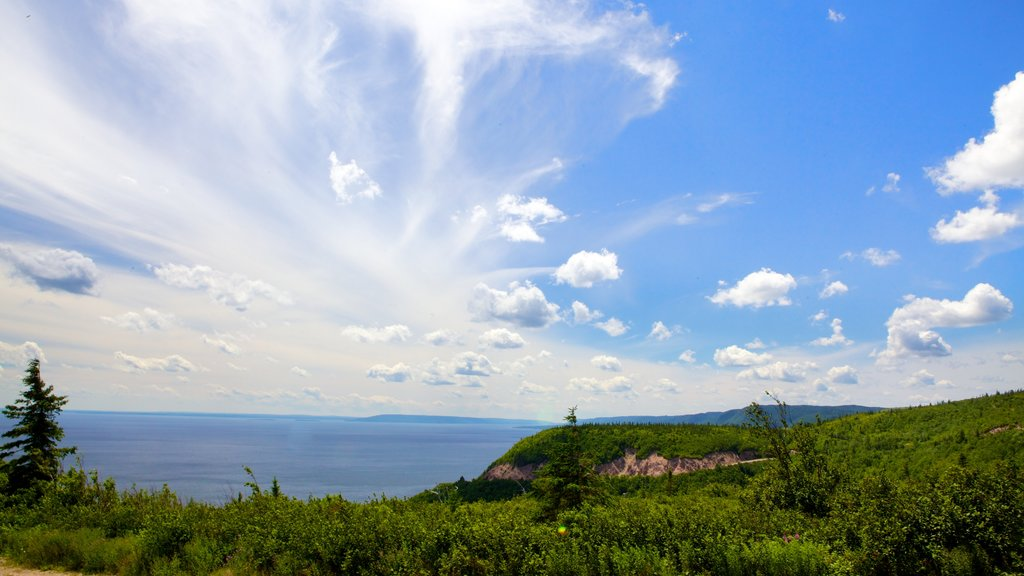 Cape Smokey que incluye escenas forestales y vistas generales de la costa