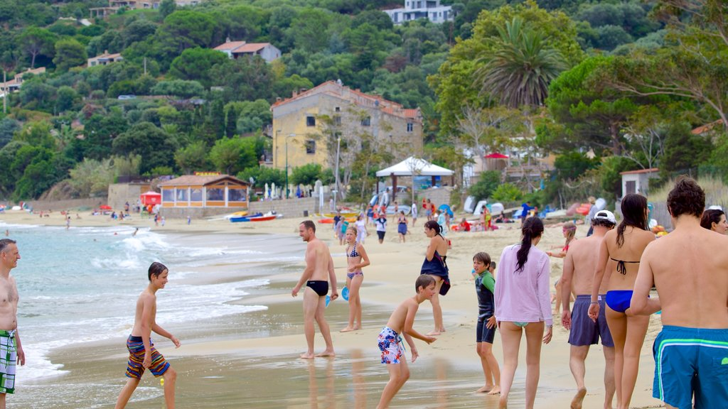 Belvedere-Campomoro showing a beach as well as a large group of people
