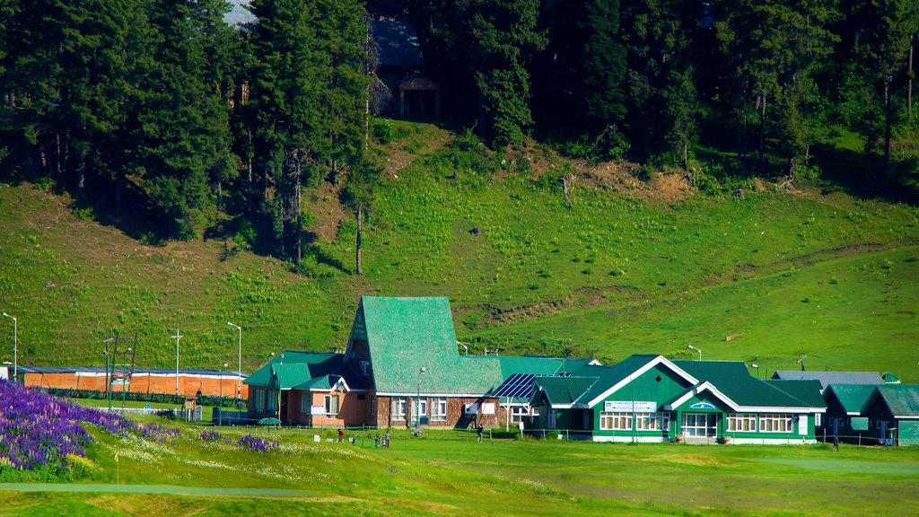 Gulmarg showing a small town or village