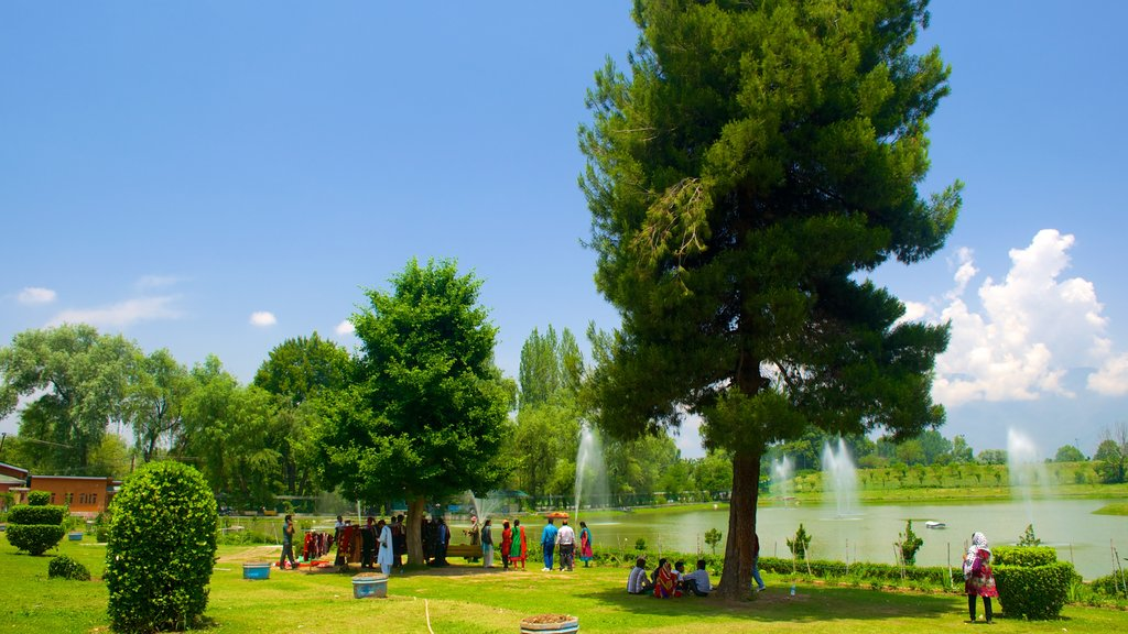 Botanical Garden showing a park