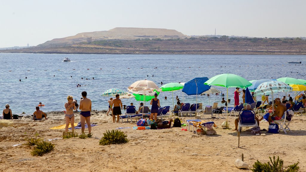 Qawra showing a sandy beach as well as a large group of people