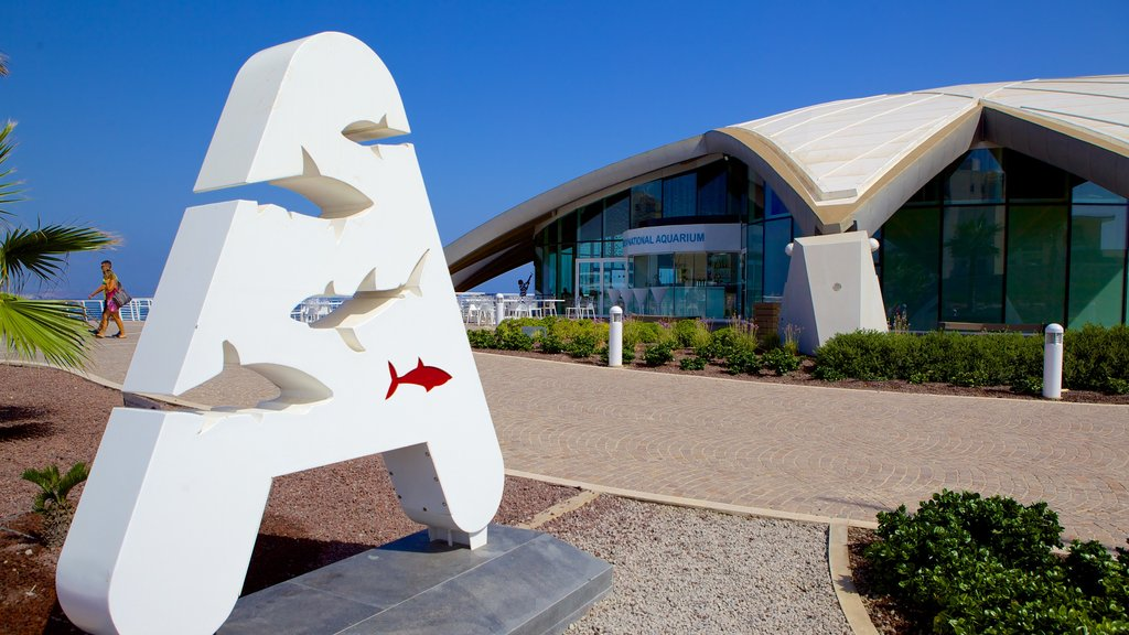 Malta National Aquarium featuring marine life, modern architecture and signage