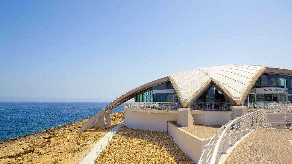 Malta National Aquarium showing marine life, modern architecture and general coastal views